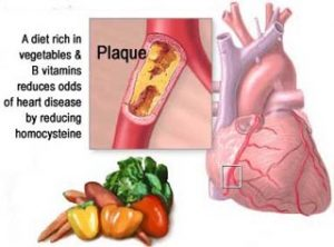 A diet rich in vegetables and B vitamins reduces odds of heart disease.